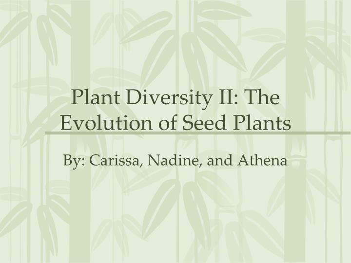 plant diversity ii the evolution of seed plants n.