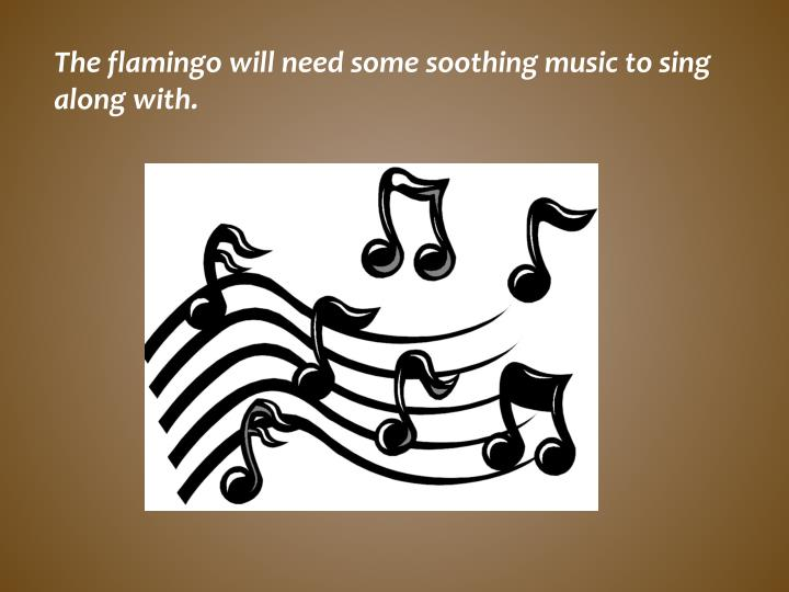 The flamingo will need some soothing music to sing along with.