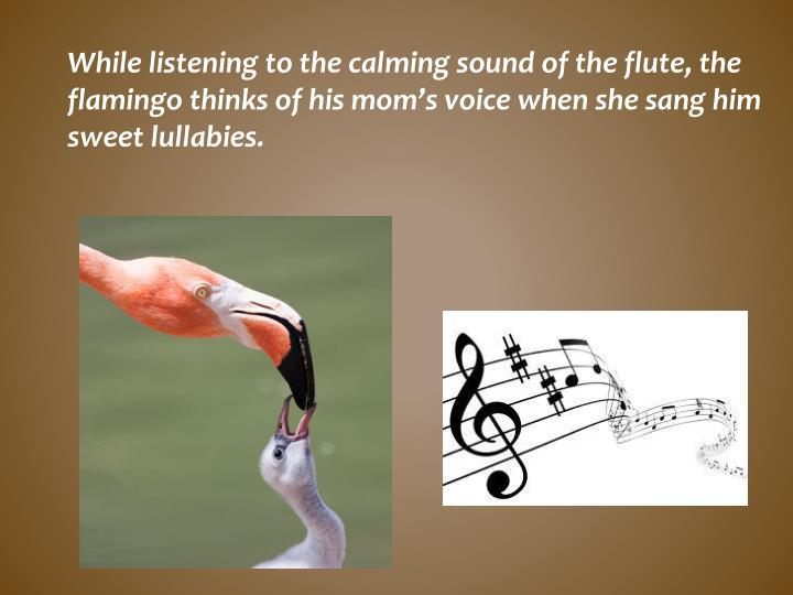 While listening to the calming sound of the flute, the flamingo thinks of his mom's voice when she sang him sweet lullabies.