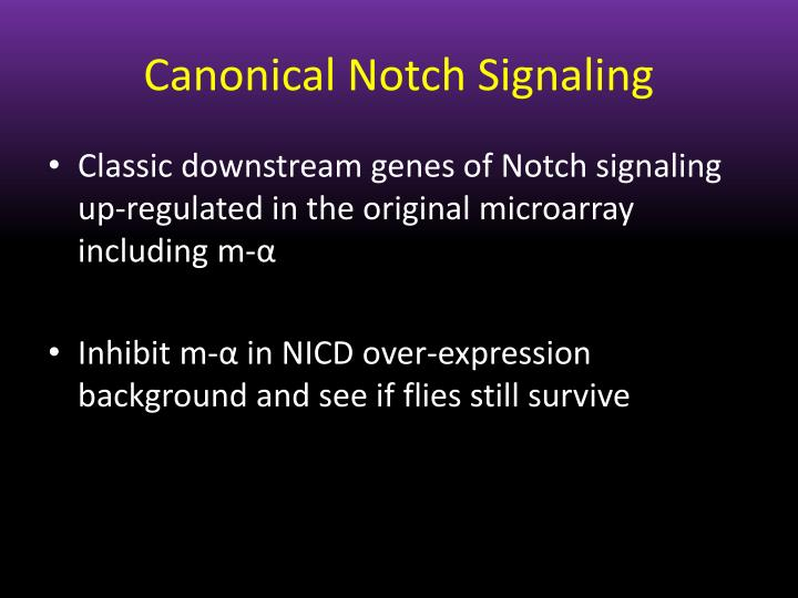 Canonical Notch Signaling