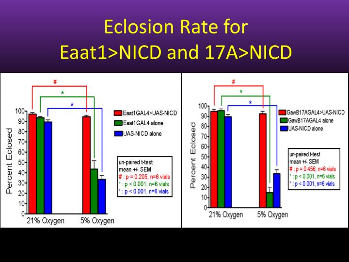 Eclosion Rate for