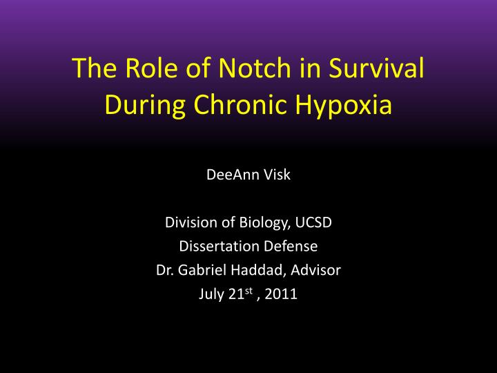 The role of notch in survival during chronic hypoxia