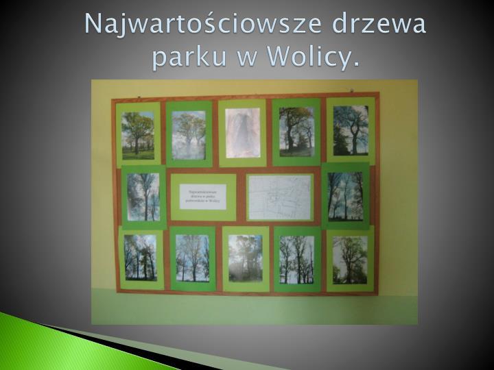 Najwartościowsze drzewa  parku w Wolicy.