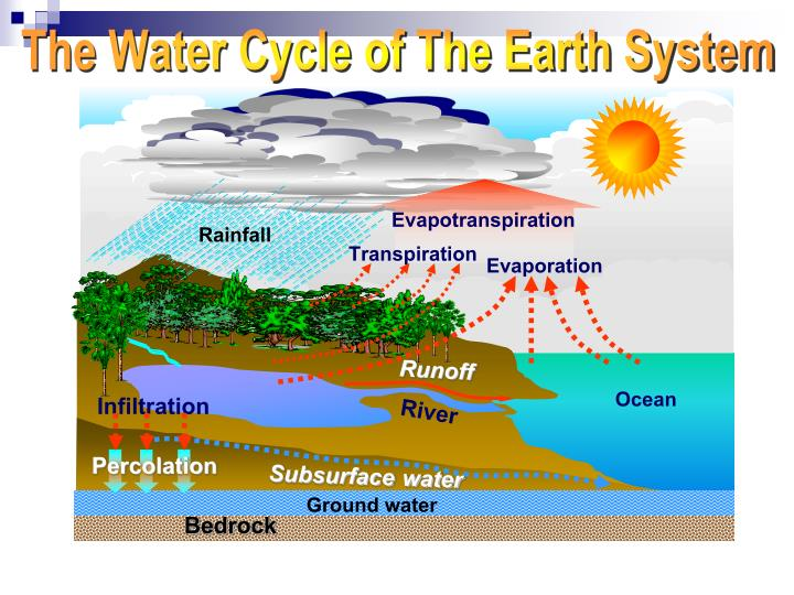 The Water Cycle of The Earth System