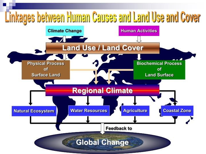 Linkages between Human Causes and Land Use and Cover
