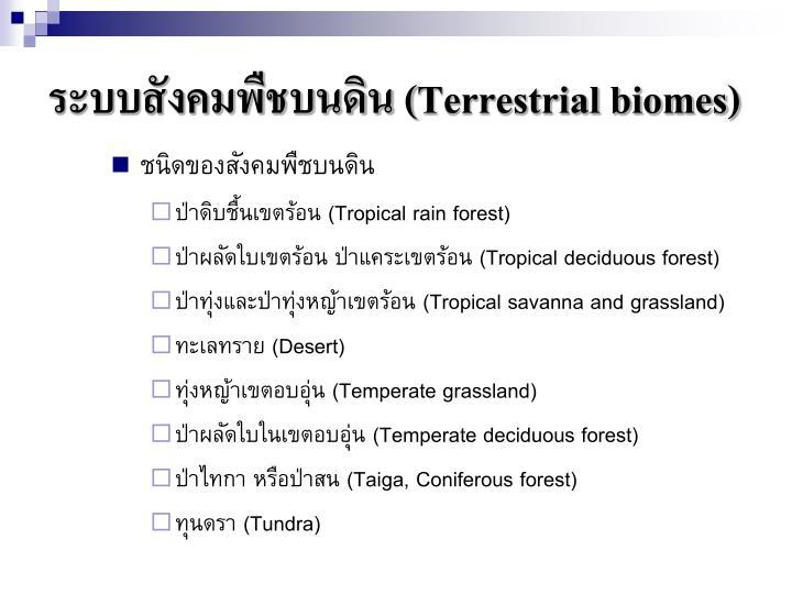 ระบบสังคมพืชบนดิน (