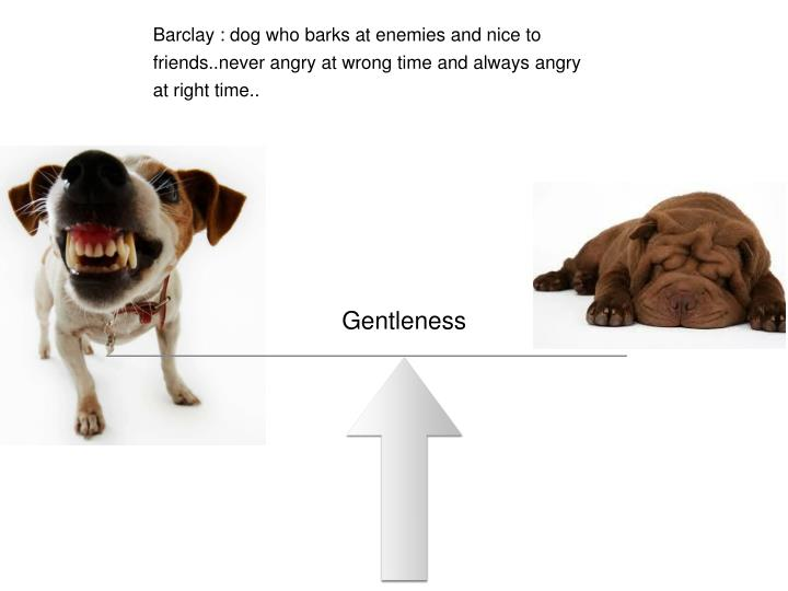 Barclay : dog who barks at enemies and nice to friends..never angry at wrong time and always angry at right time..