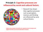 principle 3 cognitive processes are influenced by social and cultural factors