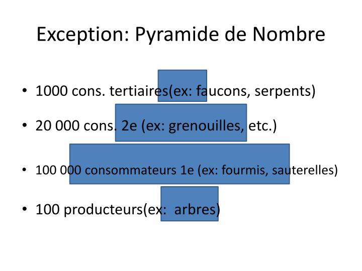 Exception: Pyramide de Nombre