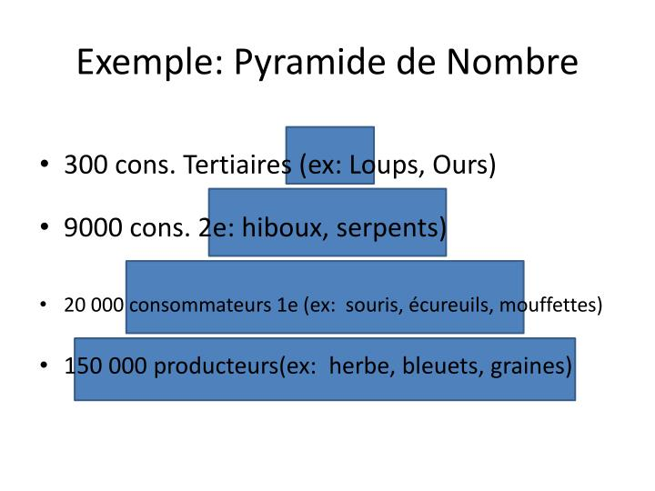 Exemple: Pyramide de Nombre