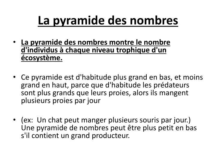 La pyramide des nombres