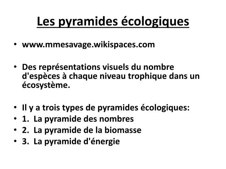 Les pyramides cologiques1
