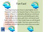 fun fact4