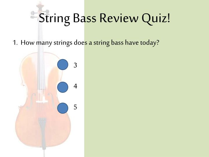 String Bass Review Quiz!