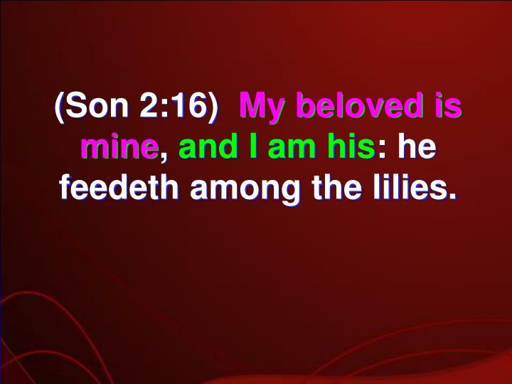 (Son 2:16)
