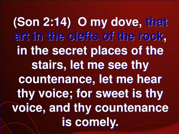 (Son 2:14)  O my dove,