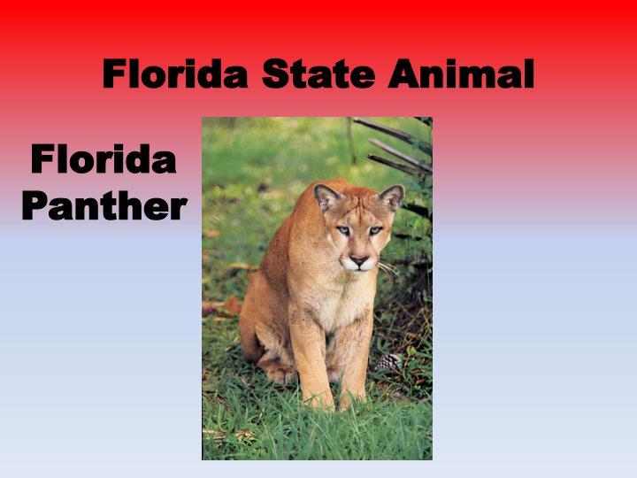 Ppt Florida State Symbols Powerpoint Presentation Id2049483