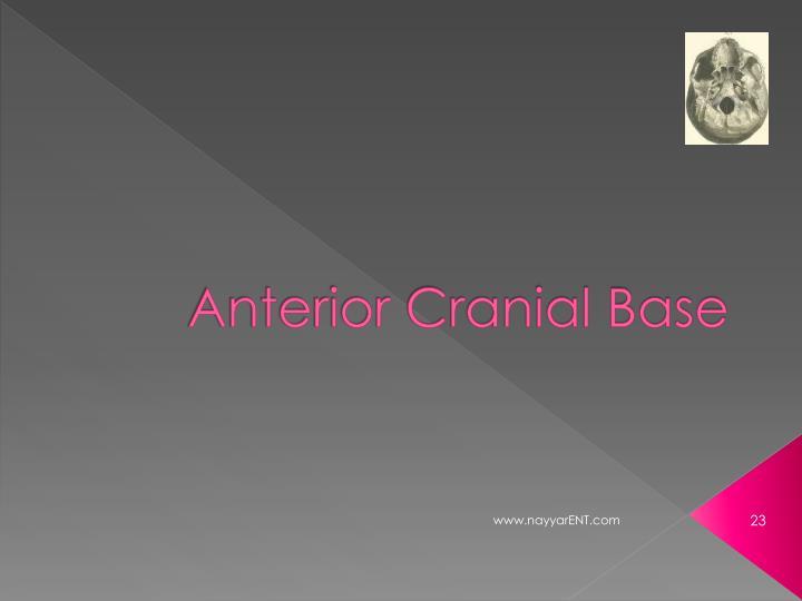 Anterior Cranial Base