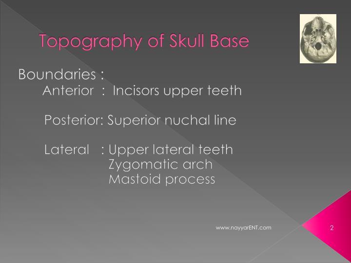Topography of skull base