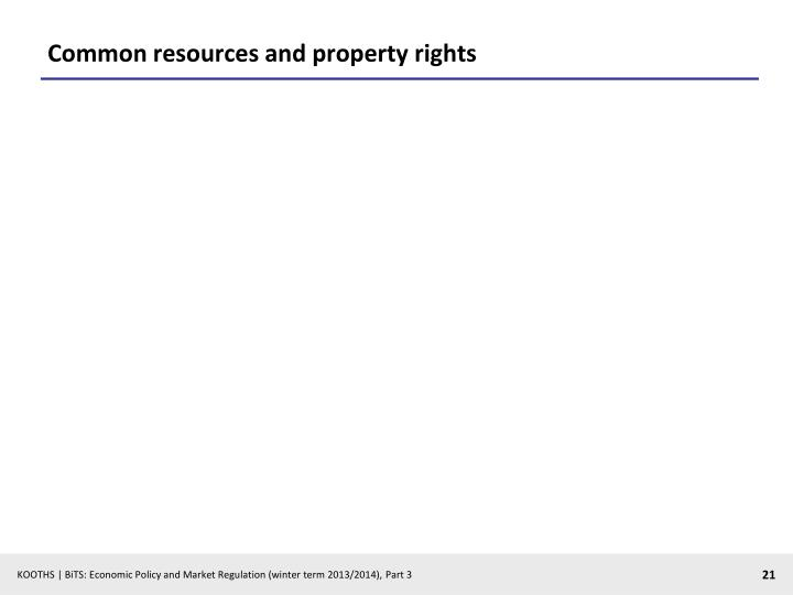 Common resources and property rights