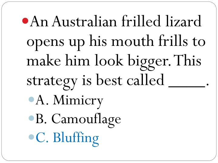 An Australian frilled lizard opens up his mouth frills to make him look bigger. This strategy is best called ____.