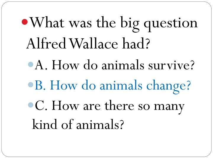 What was the big question Alfred Wallace had?