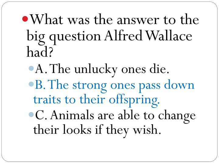 What was the answer to the big question Alfred Wallace had?