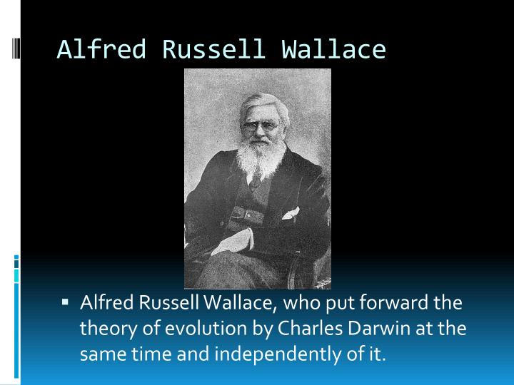 an analysis of the role of alfred russel wallace