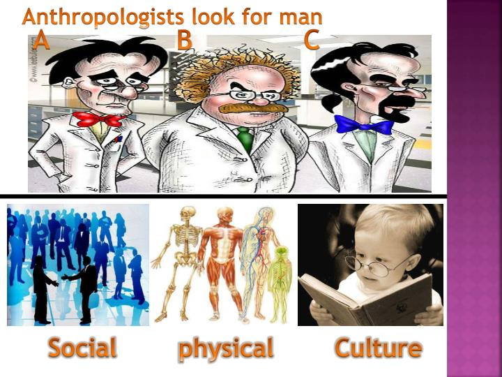 Anthropologists look for man