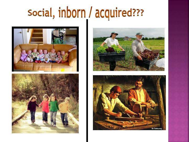 Social, inborn / acquired???