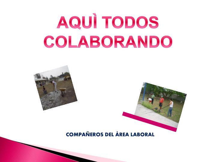 AQUÌ TODOS COLABORANDO