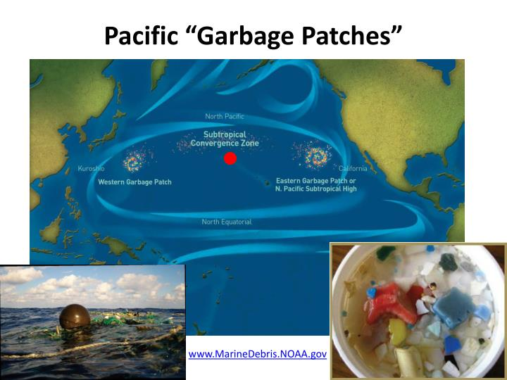"""Pacific """"Garbage Patches"""""""