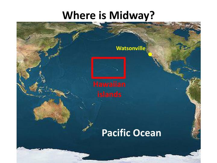 Where is midway