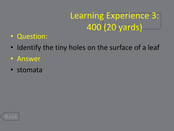 Learning Experience 3: