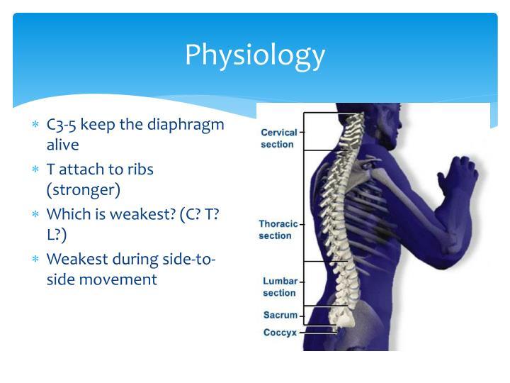 Physiology1