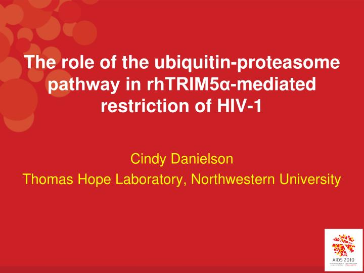 The role of the ubiquitin proteasome pathway in rhtrim5 mediated restriction of hiv 1