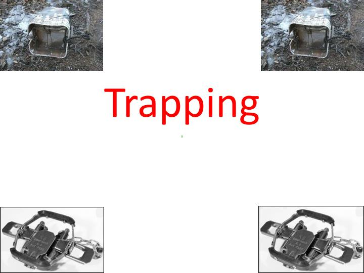 trapping n.