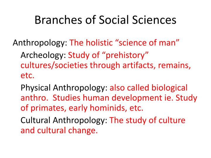 branches of social sciences n.