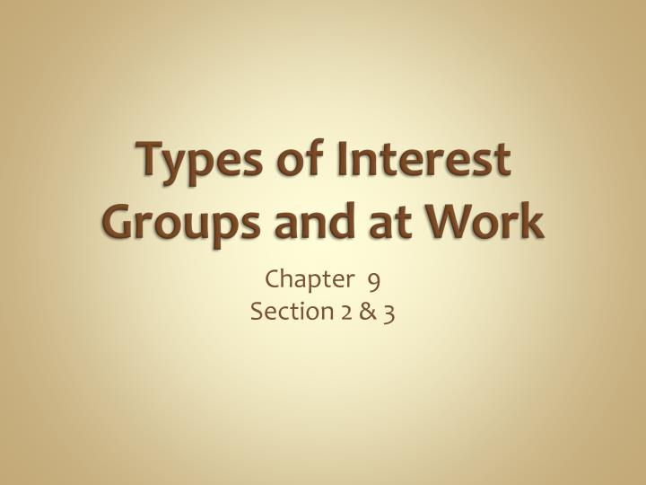 types of interest groups and at work n.