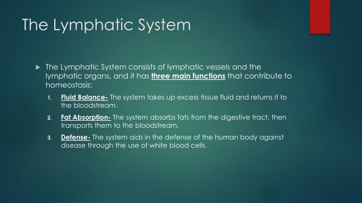 The lymphatic system1