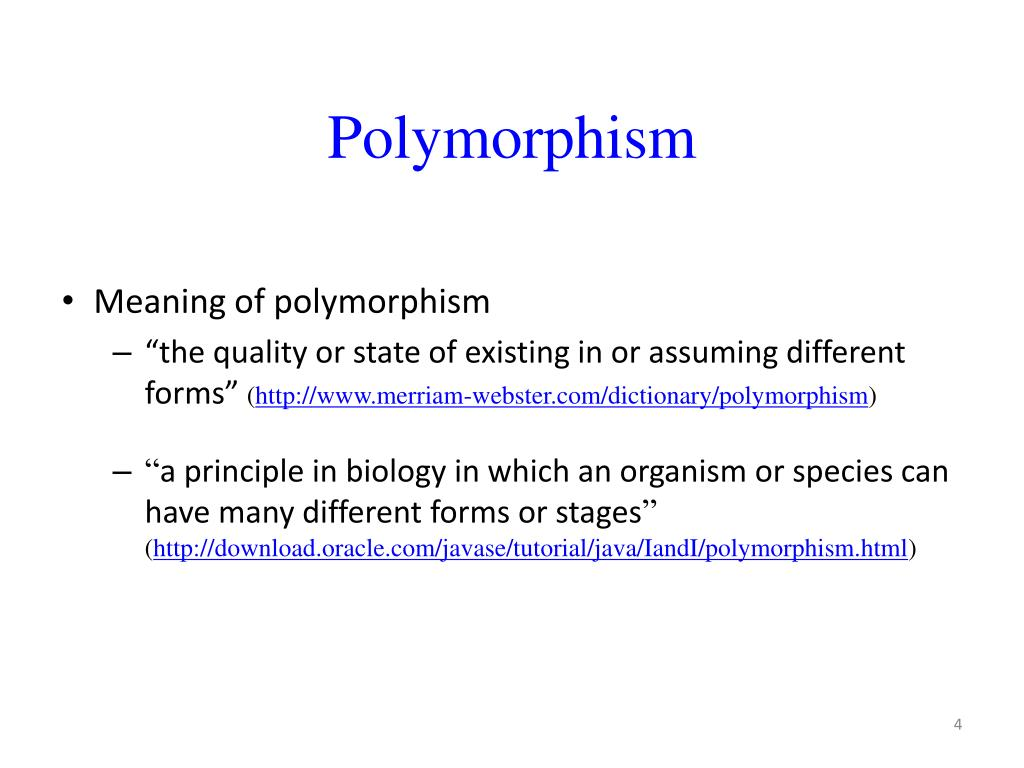 what does polymorphic mean in biology