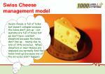 swiss cheese management model