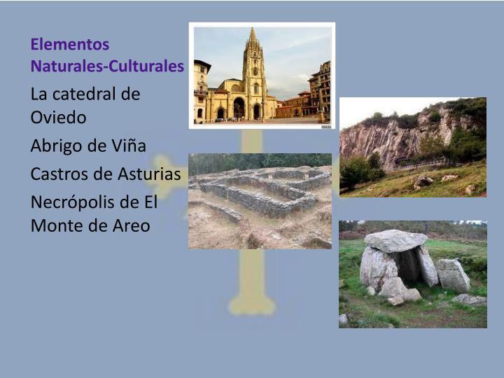 Elementos Naturales-Culturales