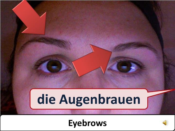 die Augenbrauen