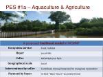 pes 1a aquaculture agriculture