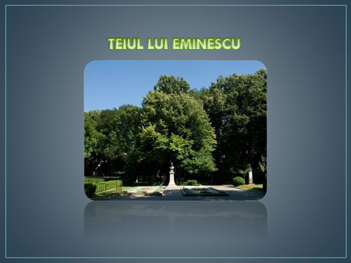 TEIUL LUI EMINESCU