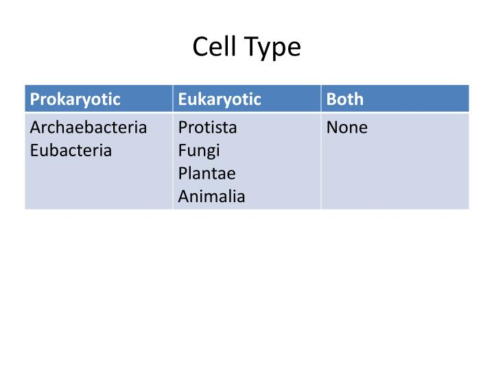 Cell Type
