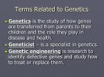 terms related to genetics