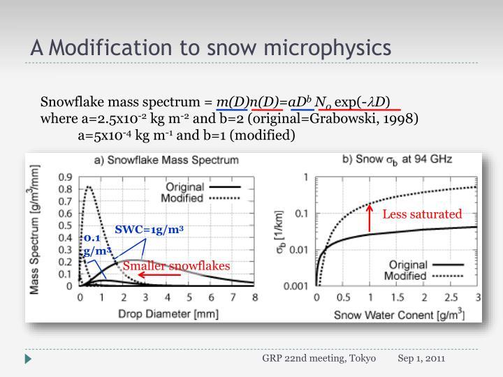 A Modification to snow microphysics