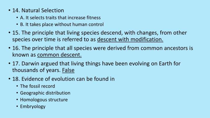 14. Natural Selection